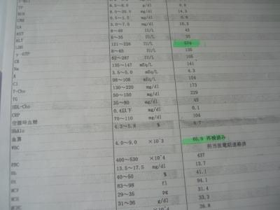 20070327_1.jpg