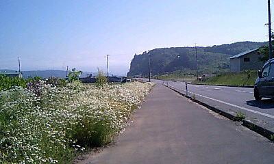 20070605_6.jpg