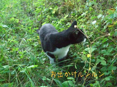 20071010_4.jpg