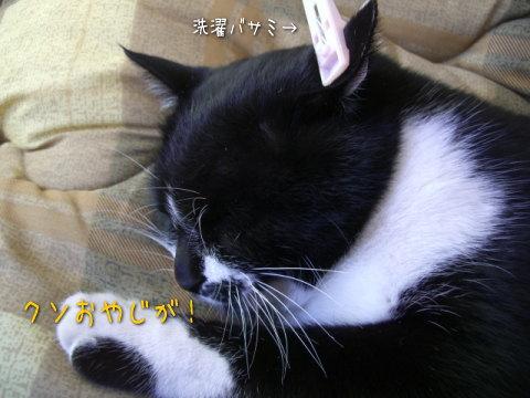 20071207_3.jpg