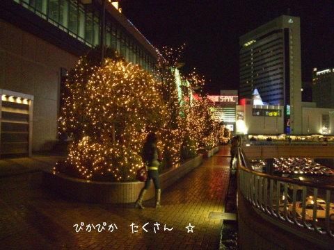 仙台駅のイルミ
