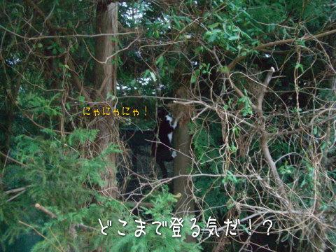 20071221_6.jpg