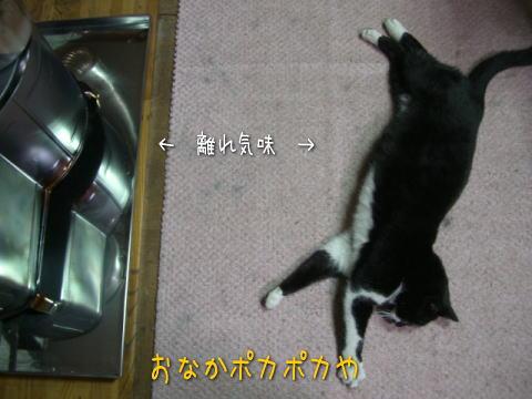 20071225_3.jpg