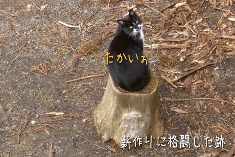 20071229_3.jpg