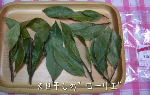 枝付のローリエ