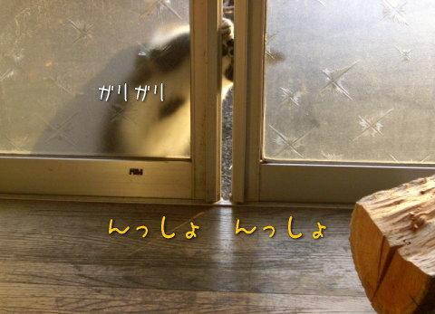 20080115_6.jpg