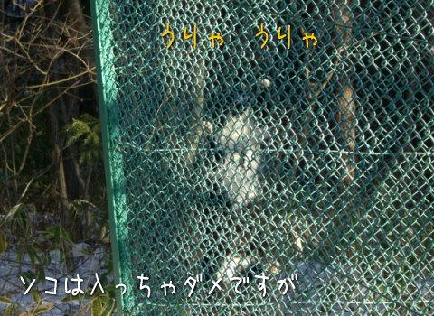 20080118_7.jpg