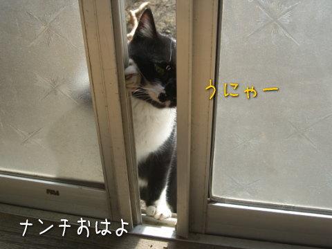 20080120_3.jpg