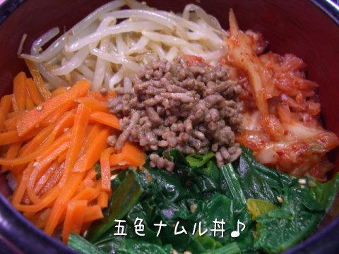 五色ナムル丼