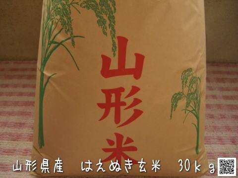 山形県産 はえぬき玄米 30kg