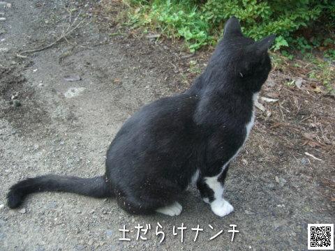 20081014_4.jpg