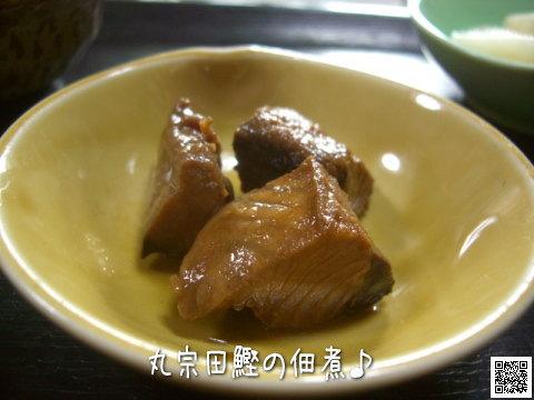 丸宗田鰹の佃煮