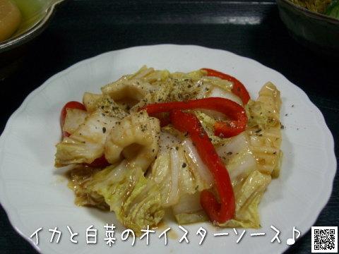 イカと白菜のオイスターソース