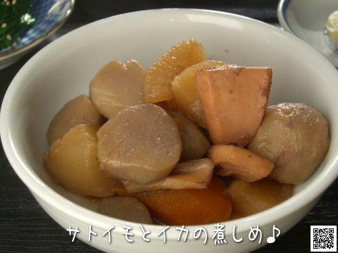 サトイモとイカの煮物