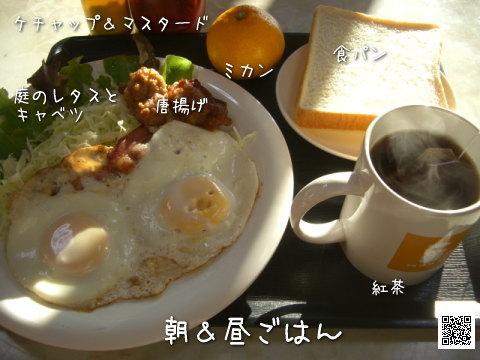 朝&昼ごはん