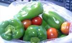 ピーマンとプチトマト